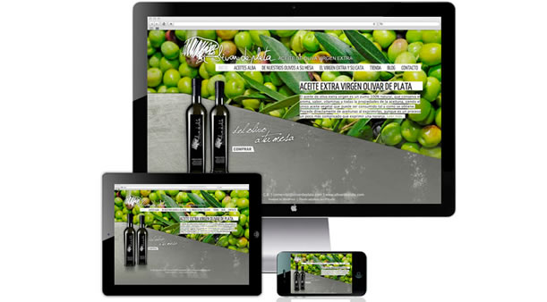 Dise o web para olivar de plata cabello x mure dise o for Casas de diseno grafico en la plata